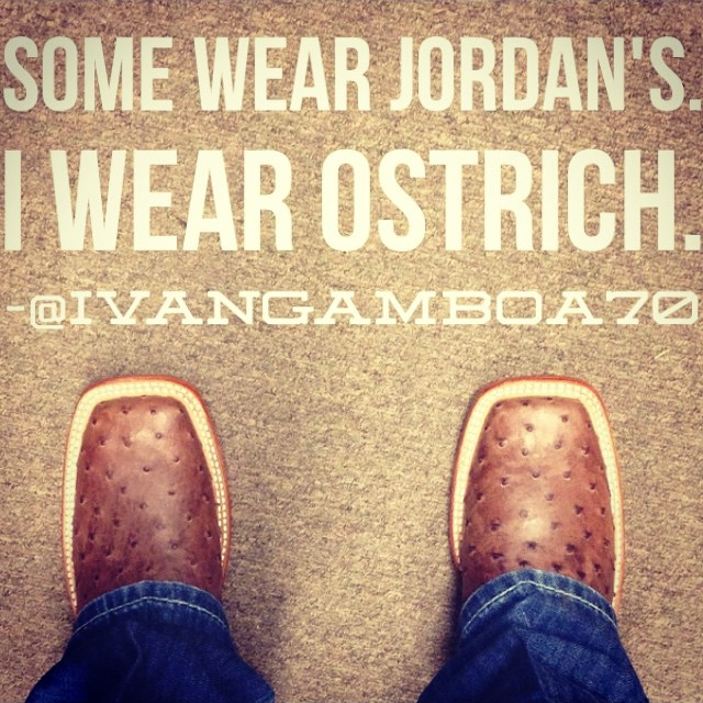 We couldn't have said it better ourselves. #ostrichforlife #cavenders